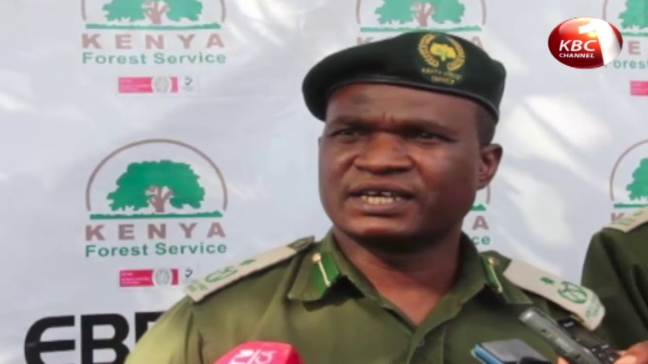 Kenya Forest Service ropps students in environmental conservation