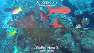 actionpro x7 vs gopro hero3 black diving comparison