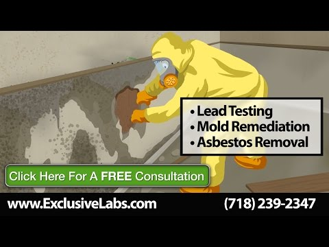 mold-remediation-white-plains-ny-|-lead-paint-testing-|-exclusive-testing-labs