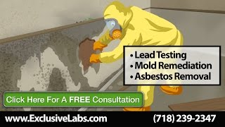 Mold Remediation White Plains NY | Lead Paint Testing | Exclusive Testing Labs