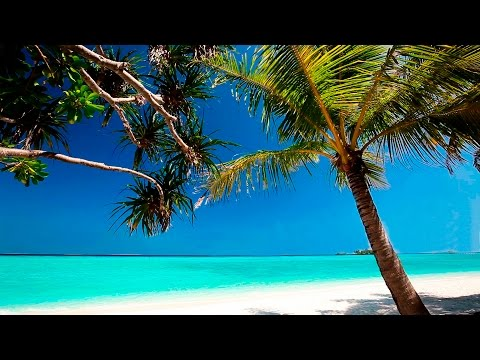 Calming Music - HD Beach Relaxation