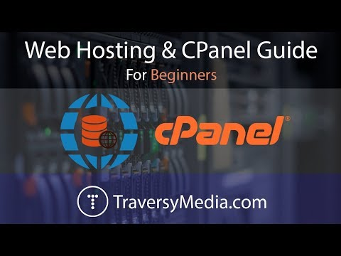 Web Hosting & CPanel Guide – How To Easily Upload Your Website