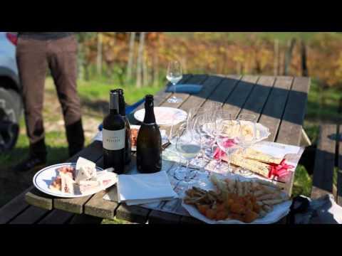 Turismo Enogastronomico: visita cantine, degustazioni vino, itinerari enogastronomici Schatzitaly