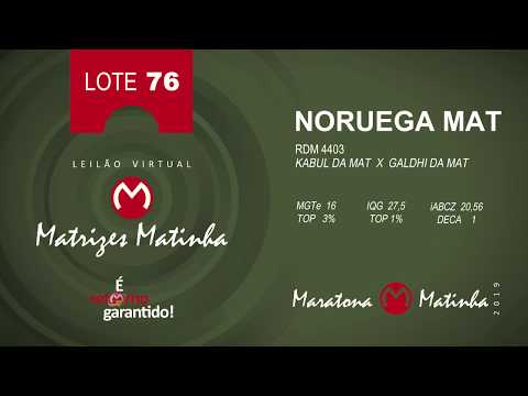 LOTE 76 Matrizes Matinha 2019