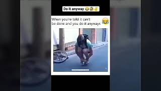 Try Not To Laugh | Funny videos | Funny Fail Completion