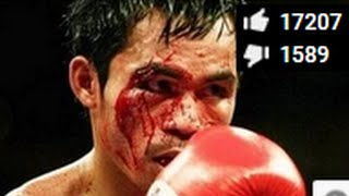 the boxing 2015 funny boxing knockouts ufc ultimate boxing knockouts