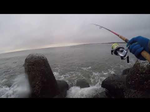 Рыбалка в Балтийске с Владосом, Северный мол!!!