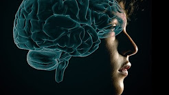 The Teenage Brain Is Primed For Addiction