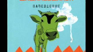 LaBrassBanda - Zehnerlfuxa