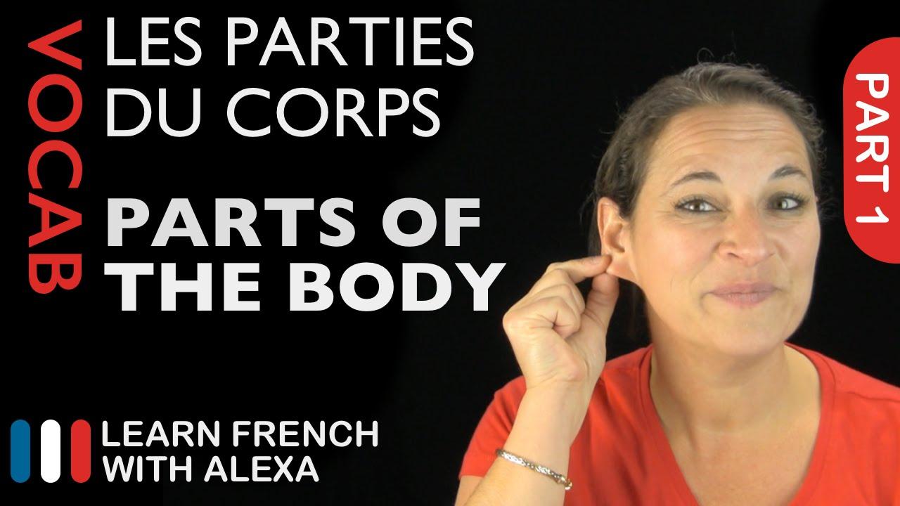 Amazon.com: French Tutor: Alexa Skills