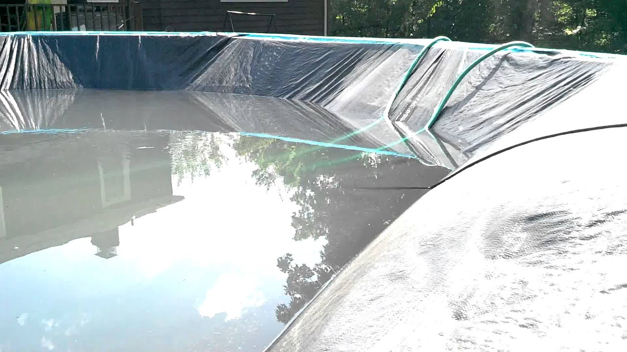 How To Get Rid Of Tadpoles In Pool Cover