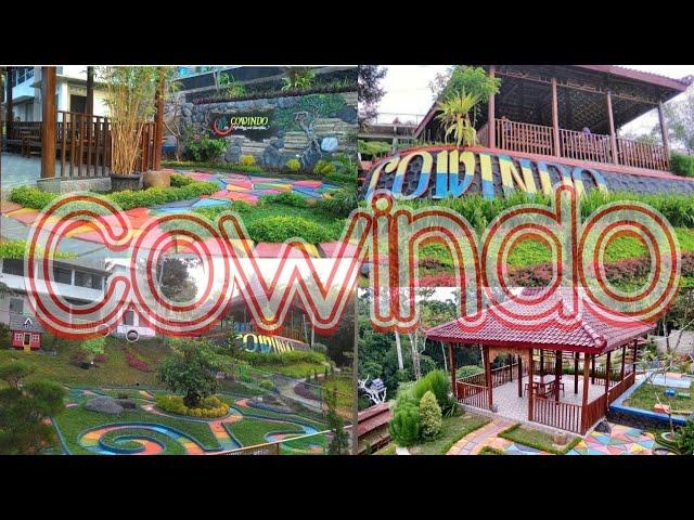 COWINDO WISATA HUTAN BAMBU | SENDANG, TULUNGAGUNG, JAWA TIMUR