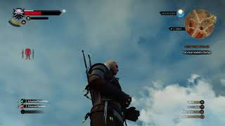 The Witcher 3: Wild Hunt_20170915132948