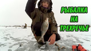 Зимняя рыбалка на Проне, Трехречье