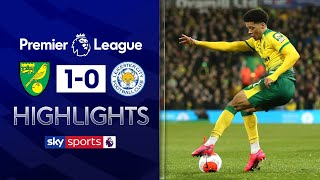 Jamal Lewis super strike shocks Leicester! | Norwich 1-0 Leicester City | EPL Highlights