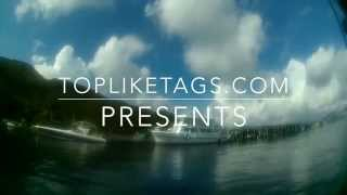 How To Get Likes and Followers on Instagram (Easy & Quick)  TopLikeTags.com