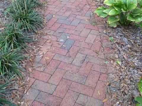 Herringbone Pattern Brick Pathway Custom Built By Larrys