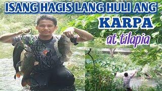 ISANG HAGIS LANG HULI ANG KARPA AT TILAPIA CASTNET FISHING SA ILOG NG TAIWAN BUHAYOFW OFWTAIWAN isda