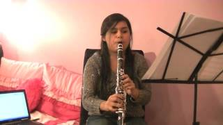 Call Me Maybe-Carly Rae Jepsen (Clarinet Cover)