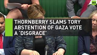 Thornberry slams Tory abstention of Gaza vote a 'disgrace'