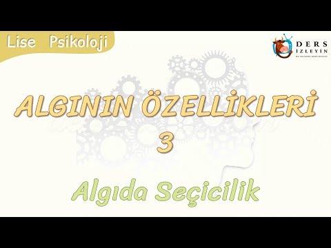 ALGININ ÖZELLİKLERİ - 3 / ALGIDA SEÇİCİLİK