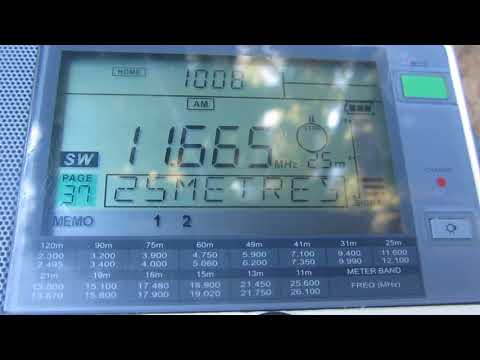 NHK WORLD RADIO JAPAN [IBARAGI, 300 KW] — 11665 KHZ — [4 DEC. 2017 21.08 UTC]