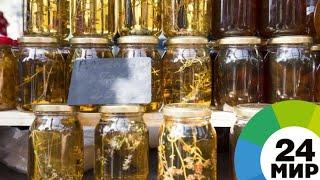 Сладкая выставка: в Москве открылась Всероссийская ярмарка меда - МИР 24