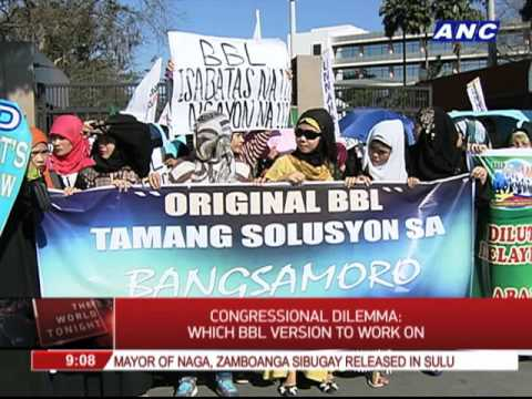 Congressional dilemma: Which BBL version to work on