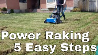 Sunjoe Scarifier Review and Ugly Lawn Power Rake Update. DIY How to fix ugly lawn