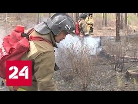 За сутки в России потушено больше 40 природных пожаров