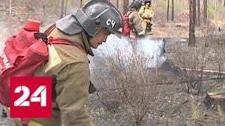 За сутки в России потушено больше 40 природных пожаров - Россия 24