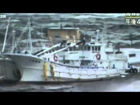 Tsunami Dock Washes Up Coast of Oregon