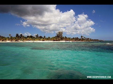Isla Saona Day Trip - Mano Juan Village Tour (Dominican Republic)