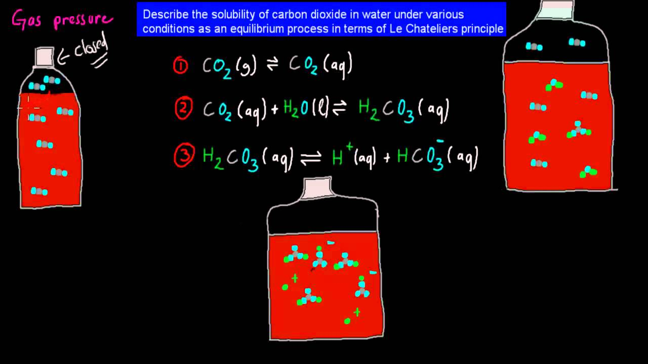 10 solubility of carbon dioxide in water hsc chemistry youtube solubility of carbon dioxide in water hsc chemistry youtube gamestrikefo Image collections