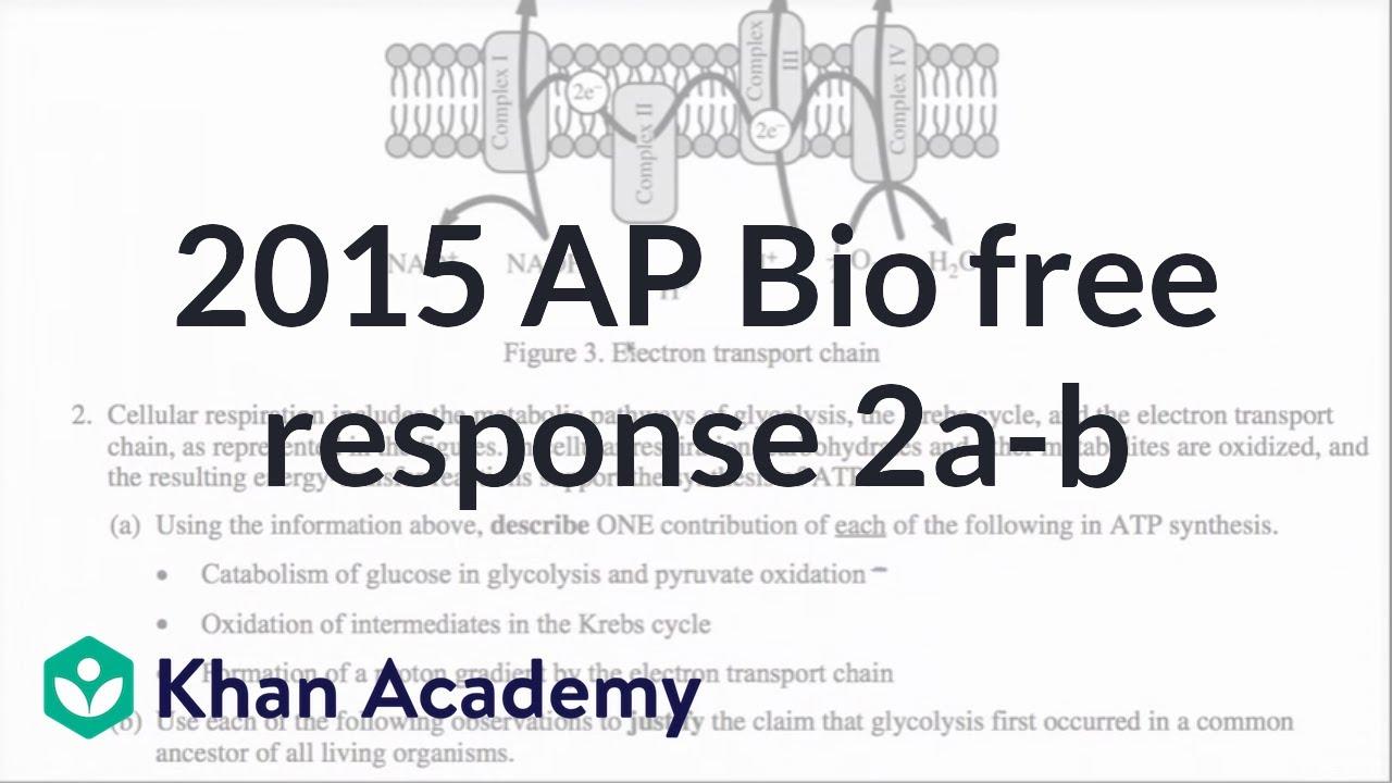 OLD AP Bio Essay Questions   Scribd Scribd