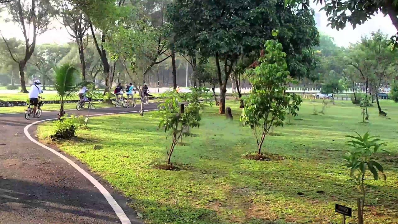 Delicieux Raj Thackeray   Nashik Navnirman  Botanical Garden   YouTube