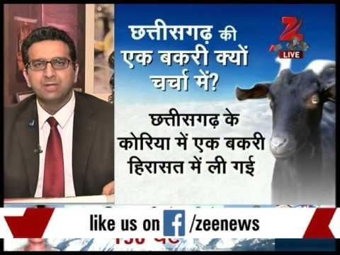 Panel discussion on detention of goat for grazing in bureaucrat's garden- Part II