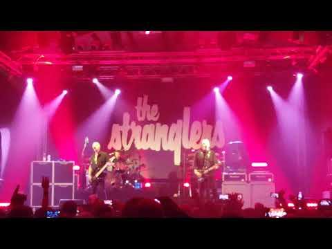 The Stranglers No More Heroes (Live Estragon Bologna 30-11-2019)