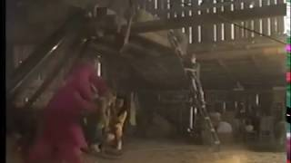 Barney's Great Adventure: The Movie (vhs Version)