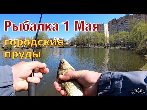 Рыбалка 1 Мая . Караси на удочку в городском пруду