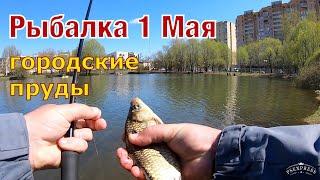 Рыбалка 1 Мая Караси на удочку в городском пруду
