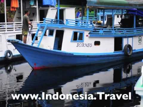 Things to do in Kalimantan, Indonesia (Indonesian Borneo)