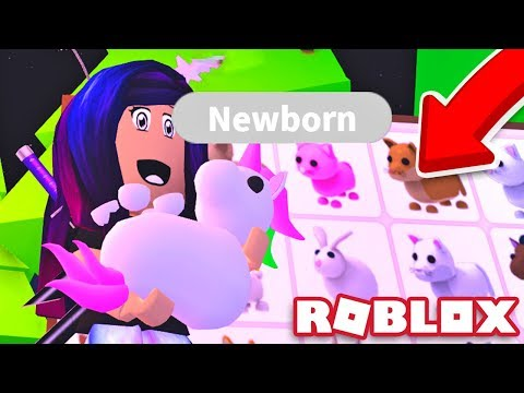 getting-every-pet-in-roblox-adopt-me!