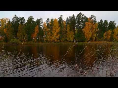 Retkeilijan Etela Kallavesi Jouni Ohtamaan Video Retkipaikka