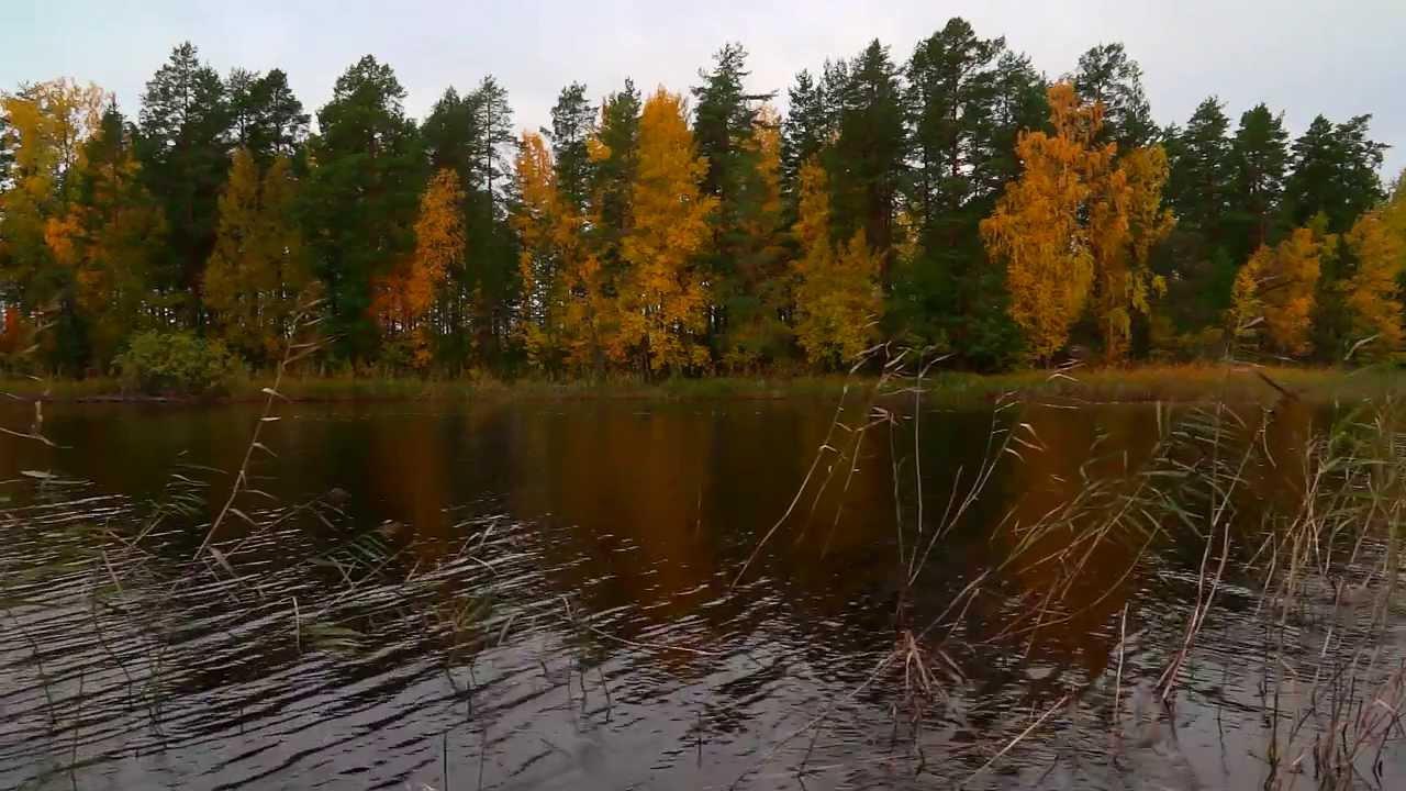 Retkeilijan Etela Kallavesi Youtube