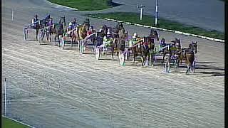 Vidéo de la course PMU PREMI BUFALO