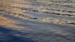 Aguas de Mar del Cortes de  La Paz, B.C.S., Mexico