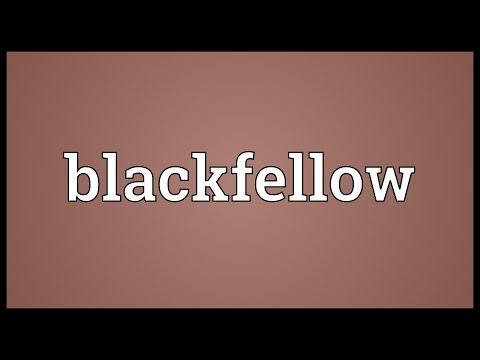 Header of blackfellow