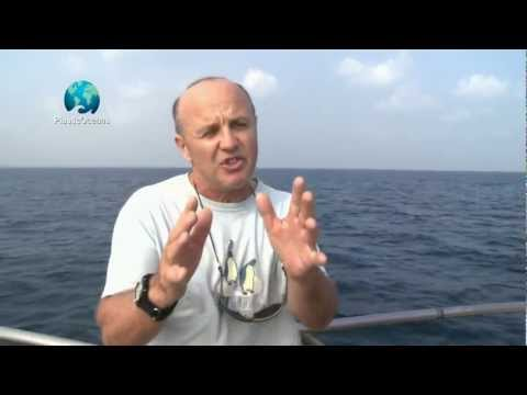 Doug Allan Talks about Plastic Oceans - YouTube