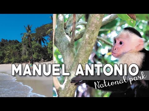 Manuel Antonio National Park | What To Do In Costa Rica
